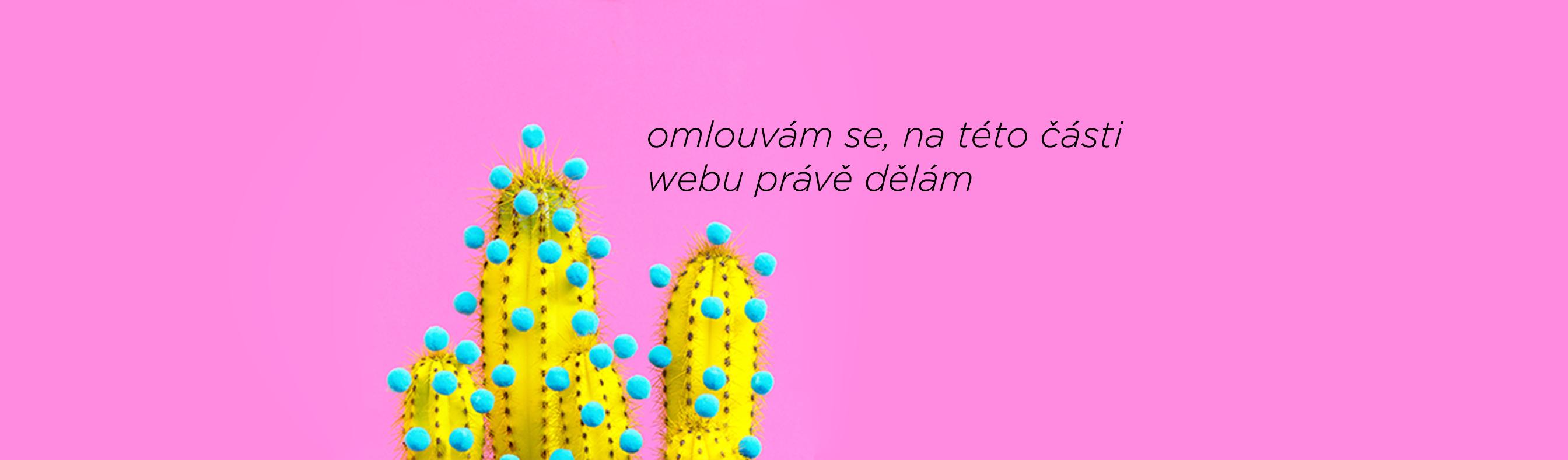 banner portfolio monika aron